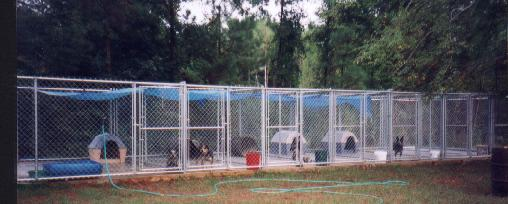 Timber Kennels pictured in 1997